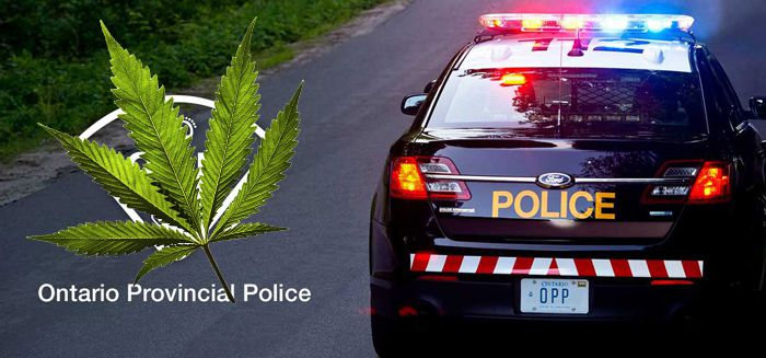 OPP   Cannabis  Lake Superior News