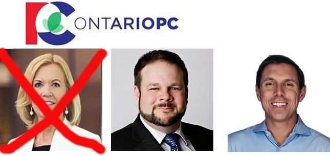 Christine Elliott, Derek Parks, Patrick Brown