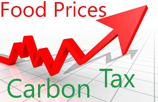 Carbon tax will drive up grocery prices    Lake Superior News