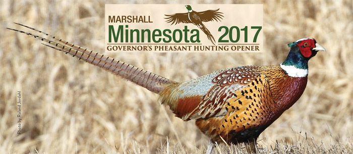 Governor Pheasant Opener hunting season    Lake Superior News
