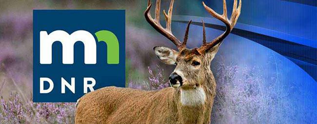 Minnesota Deer Hunting  Lake Superior News