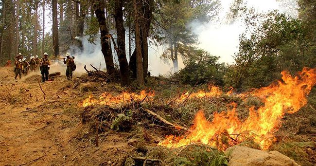 PRESCRIBED FIRE DECREASES WILDFIRE RISK, IMPROVES HABITAT AND ENHANCES FOREST HEALTH ACROSS SUPERIOR NATIONAL FOREST  Lake Superior News