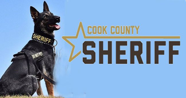 K9 Eddy Cook Country Sheriff    Lake Superior News