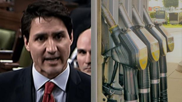 Trudeau Carbon Tax   Lake superior News