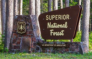 Superior National Forest   Lake Superior News